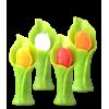 Tulipan Kwiat